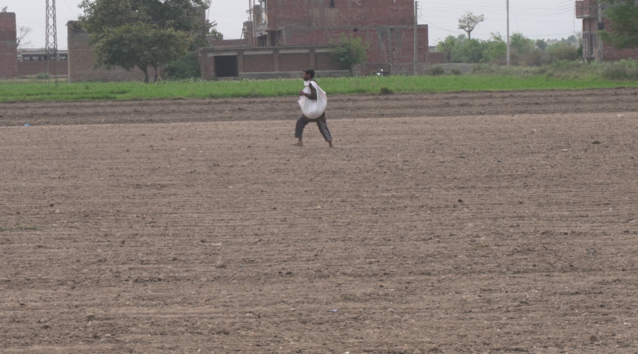 Agriculture land in Pakistani Punjab being sold to Housing Socities